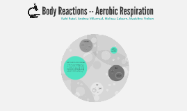 Body Reactions