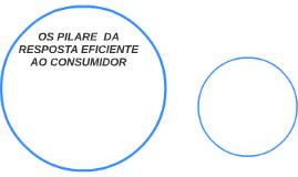 OS PILARE  DA RESPOSTA EFICIENTE AO CONSUMIDOR