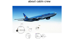 about cabin crew