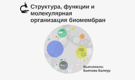 Структура, функции и молекулярная организация биомембран