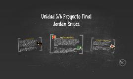 Unidad 5/6 Proyecto Final