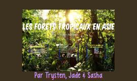 Les forets tropicaux