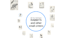 Drawing Rabbits/ Small Critters: ART One Final Project