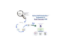 School Self-Evaluation - Experience
