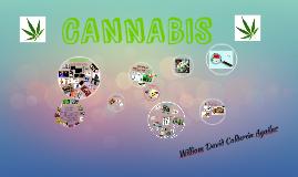 Copy of CANNABIS MEDICINAL