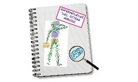 Copy of Enfermedades del Sistema Nervioso