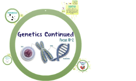 Focus 10-2: Genetics Continued
