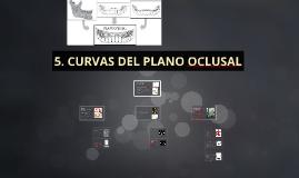 CURVAS DEL PLANO OCLUSAL