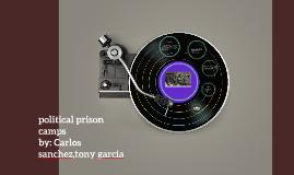 political prison camps