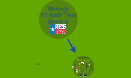 Biology STAAR Review Reporting Category 4