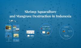 Shrimp Aquaculture and Mangrove Destruction in Indonesia