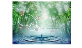 Copy of proyecto fontana
