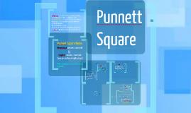 Punnett Square Notes