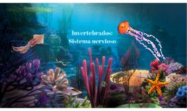 Invertebrados: Sistema nervioso
