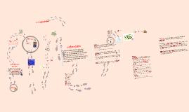 Copy of Copy of lipidos