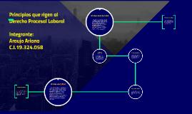 Copy of Principios que rigen al Derecho Procesal Laboral