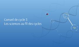 Conseil de cycle 3