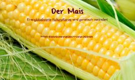 Der Mais - eine globalisierte Kulturpflanze wird genetisch v