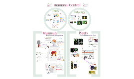 AP Bio:  Hormonal Control and Endocrine