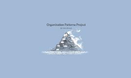 Organization Patterns Project