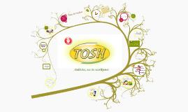 Copy of Galletas Tosh