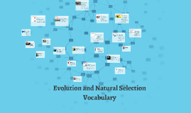 Evolution and Natural Selection Vocabulary