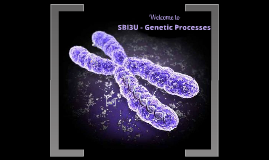 SBI3U - GENETIC PROCESSES
