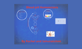 Blood pH Homeostasis