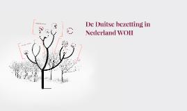 De Nederlandse bezetting WOII