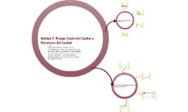 Unidad 2: Riesgo, Costo del Capital y Estructura del Capital - Hasta Parte 2