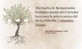 Alternativa de Restauración Ecológica dentro del Corredor Se