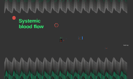 Systemic blood flow