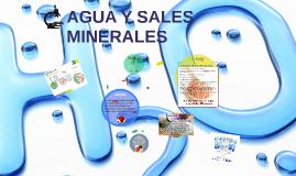 Copy of AGUA Y SALES MINERALES