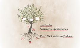 Avaliação Neuropsicopedagogica