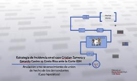 Estrategia de Incidencia en el caso Cristian Zamora y Gerald