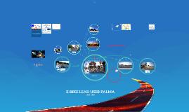 LEAD USER E-BIKE PALMA 2015-2020