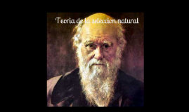 seleccion natural-darwin