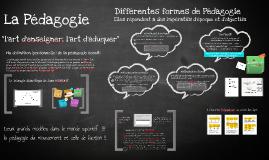 Pedagogie MSN