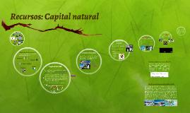 Copy of Recursos: Capital natural