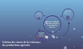 Copy of Comment expliquer une telle croissance des productions agric