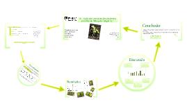 """Copy of Acção Anti-senescente das citocininas em folhas de """"Phaseolus vulgaris L."""""""