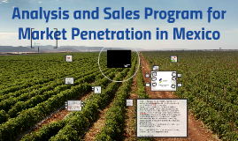 Analysis and Sales Program for Market Penetration in Mexico