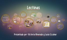 Lecitinas