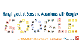 Hanging out at Zoos and Aquariums with Google+ (General)