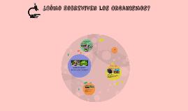 ¿Cómo Sobreviven los Organismos?