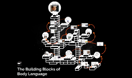 The Building Blocks of
