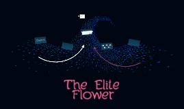 The Elite Flower
