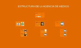 Copy of ESTRUCTURA DE LA AGENCIA DE MEDIOS