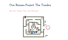 Our Biomes Project