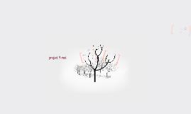 project 4 mei